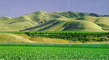 The agriculture of the Salinas Valley